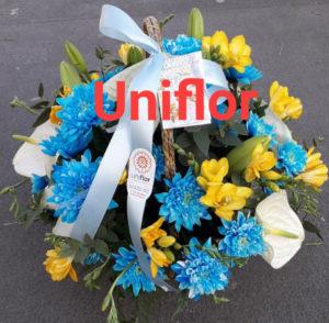Dia do Pai com Cesta de Margaridas Azuis e Fresias Amarelas - Florista Lisboa Uniflor